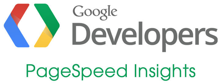 Google PageSpeed Insights Logo