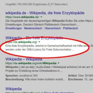 Meta Description bei Google